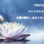 【体験】リシア 武蔵小杉 〜大きな期待をしたら・・・ 〜
