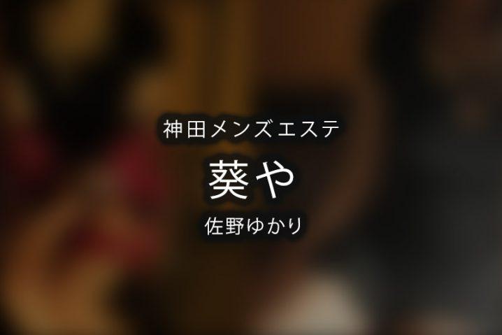 【体験】葵や 神田(佐野ゆかり)〜OPIスタンオンパレード〜