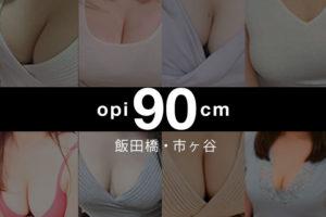 【2019年11月】飯田橋・市ヶ谷おっぱい90cm以上のセラピスト【8人】