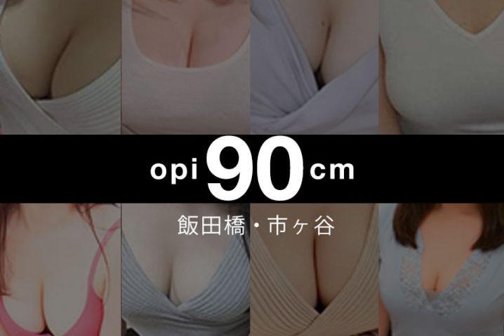 【2019年11月】飯田橋・市ヶ谷おっぱい90cm以上の巨乳・爆乳セラピスト【8人】
