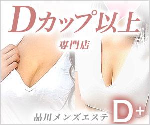 品川 D+