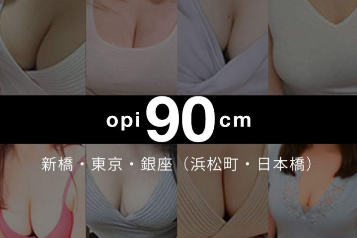 【2020年4月】新橋・東京・銀座(浜松町・日本橋)おっぱい90cm以上の巨乳・爆乳セラピスト【134人】