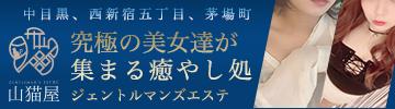 中目黒・新宿・飯田橋 - 山猫屋