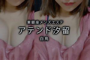 【体験】東銀座「アテンド汐留」白鳥〜多彩すぎるオリジナルの技〜