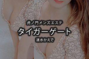 【体験】虎ノ門「タイガーゲート」速水かえで〜すみたくなるほど愛死〜